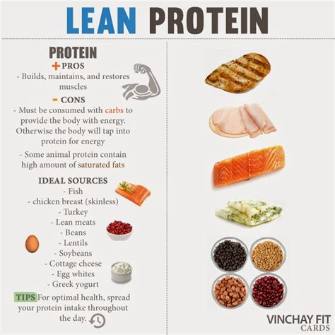 building lean solid muscle picture 11