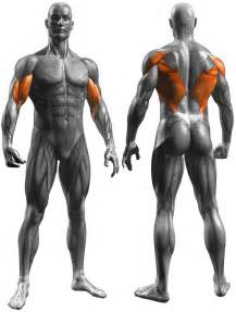 Chest muscle strain picture 7