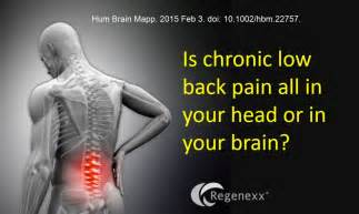 chronic back pain relief picture 1