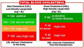 Blood cholesterol picture 1