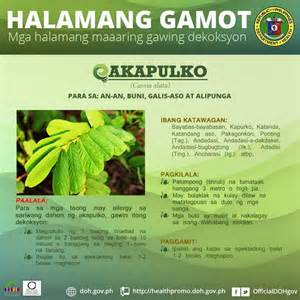 herbal na gamot para sa an an picture 3