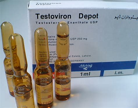 testosterone enant 250 mg side effects picture 6