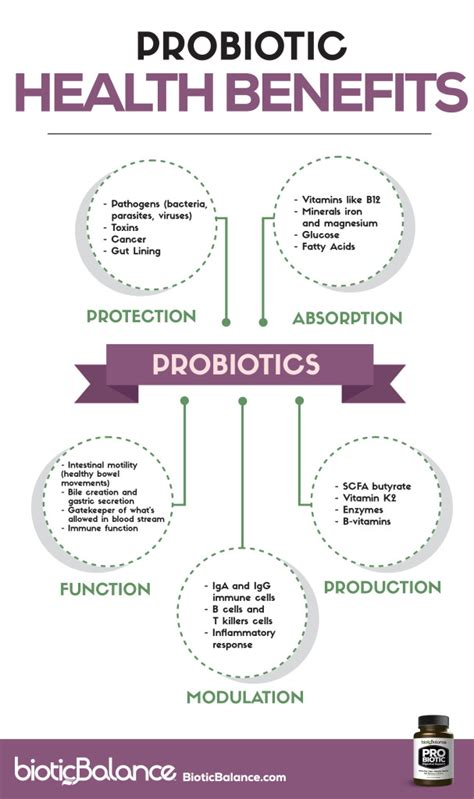 can i take probiotic with stents picture 9