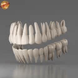 wisdom teeth picture 9