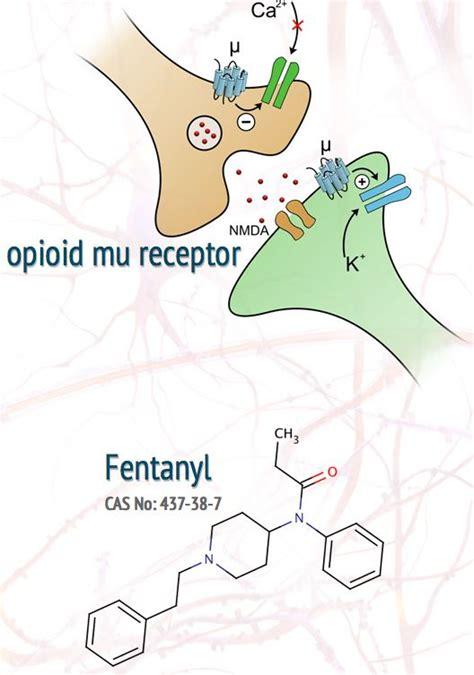mu opiod receptor herbs picture 2