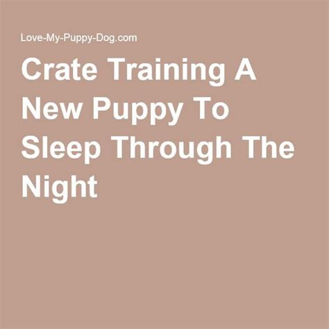 puppy sleeping through the night picture 3