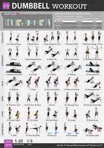 body workouts pro ipa free picture 7