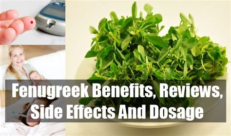 fenugreek seeds benefits warnings picture 1