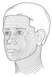 skin line picture 15