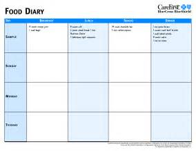 diabetic food diary sample picture 1