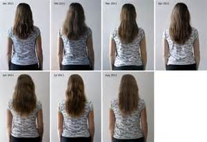 msm for hair growth reviews picture 5