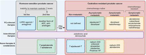metastatic colon cancer picture 14