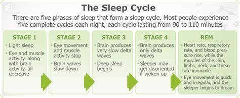 tiredness sleep cycle picture 1