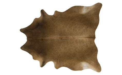 cow skin picture 14