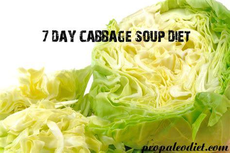 cabbage soup diet splenda picture 11