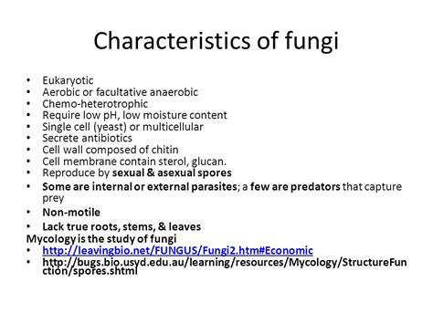 characteristics of fungi picture 13