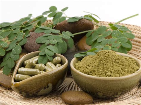 herbal cures for cancer picture 7