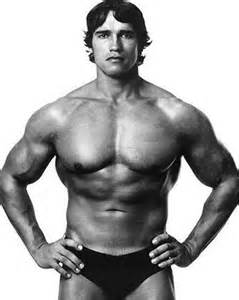 arnolds muscle pictures picture 7