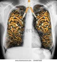 chemicals found in tobacco and its smoke picture 14