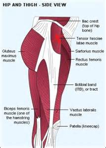 testosterone for muscle pain picture 15