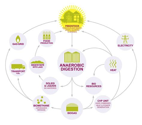 anaerobic digestion picture 3