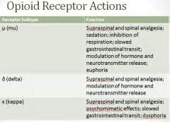 a natural opioid receptor blocker picture 3