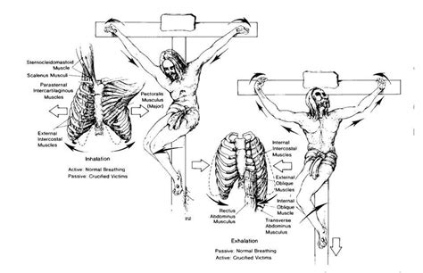 female crucifixion for punishment and pain picture 3