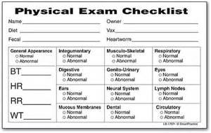 physical examination head to toe picture 5