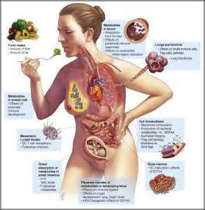 infection in the intestines or colon picture 17