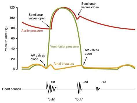 abnormal ekg and high blood pressure picture 9