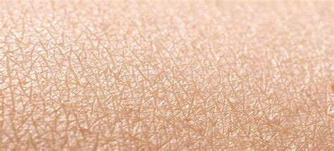about skin picture 2