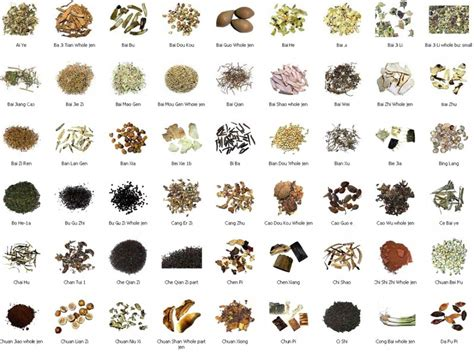 list of herbal supplements in the philippines picture 5