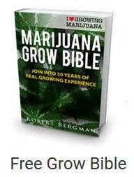 how to order marijuana edibles online picture 1