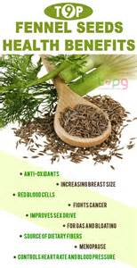 benefits of fennel picture 15