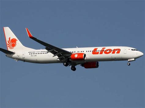 airline hire reloramax use picture 9
