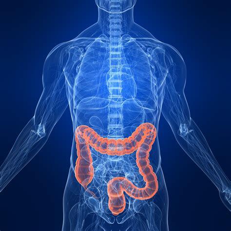 colon cancer research picture 5