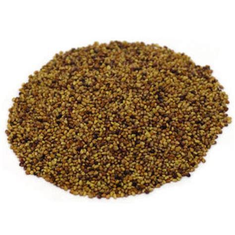 red clover seed picture 5