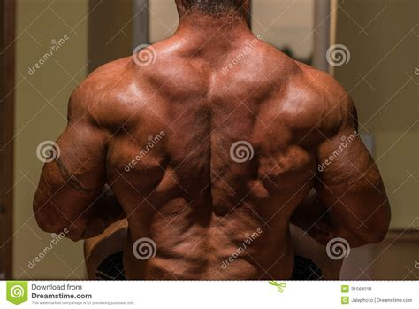 male muscle free picture 1