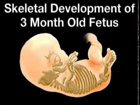 can gynaecosid remove one month pregnancy picture 9