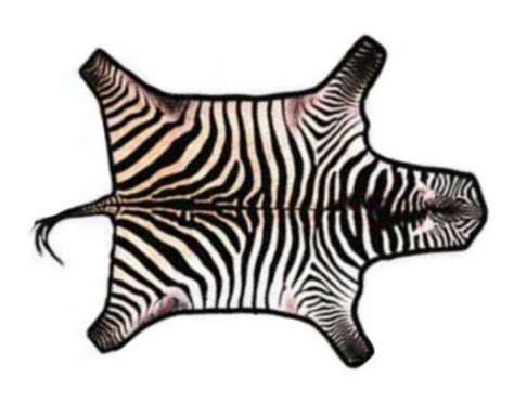 animal skin rugs picture 22