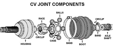 cvc joint picture 5