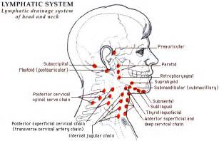 enlargen lymph node in my lower neck after picture 1