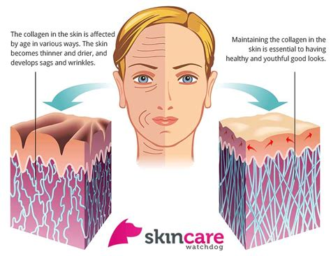 collagen oral for the skin picture 3
