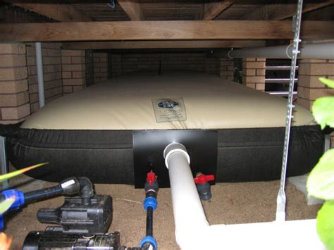 bladder water storage picture 6