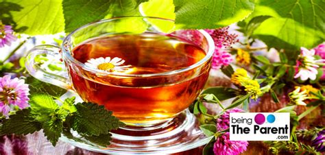 what herbal teas are safe to take while picture 8