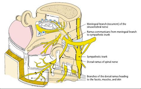chronic pain treatment picture 6