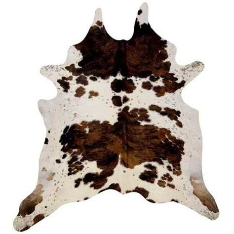 cow skin picture 3