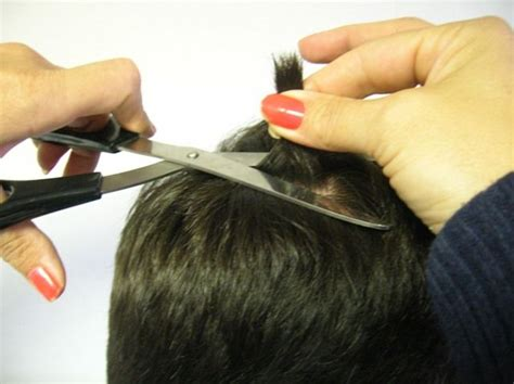 drug testing on hair for employment picture 12