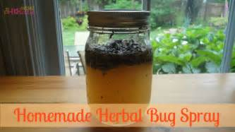 homemade herbal receipes picture 6