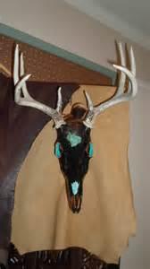 native american deer skull mounts picture 14